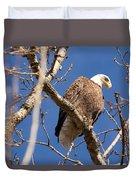 Big Eagle Duvet Cover