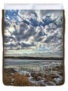 Big Marsh Spring Thaw 2 Duvet Cover