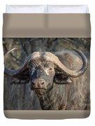 Big Old Bull Duvet Cover
