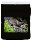 Big Tree Trail - Marmot - Sequoia National Park - California Duvet Cover