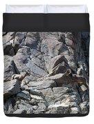 Bighorns Romantic Stare Duvet Cover