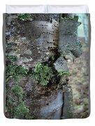 Birch Bark 1 Duvet Cover