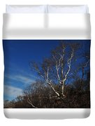 Birch On A Cliff  Duvet Cover