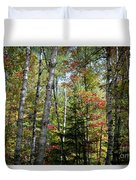 Birches In Fall Forest Duvet Cover