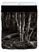 Birches In The Wood Duvet Cover
