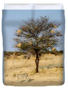Bird Nests And A Cheetah Duvet Cover