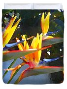 Bird Of Paradise Backlit By Sun Duvet Cover