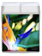 Bird Of Paradise Flower Duvet Cover