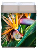Bird Of Paradise Gecko Duvet Cover