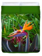 Bird Of Paradise Kalon Duvet Cover