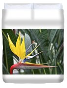 Bird Of Paradise Longwood Gardens Duvet Cover