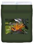 Bird Of Paradise Work Number Three Duvet Cover