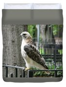 Bird Of Prey Duvet Cover