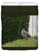 Bird On The Hedges Duvet Cover