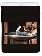 Bird Spa Duvet Cover by Christine Till