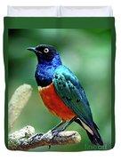 Birds 108 Duvet Cover