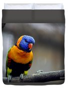 Birds 27 Duvet Cover