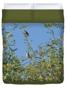 Birds At Peters Canyon Duvet Cover