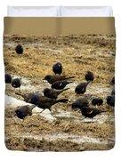 Birds In The Mud Duvet Cover