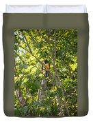 Birds Inside The Coba Ruins Duvet Cover