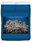 Bird's Island Duvet Cover