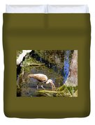 Birds Of The Everglades Duvet Cover
