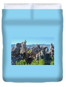 Birds On Tufa Towers-mono Lake Duvet Cover