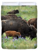 Bison And Lupine Duvet Cover
