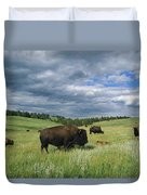 Bison And Their Calves Graze In Custer Duvet Cover