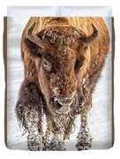 Bison Approaching  8163 Duvet Cover