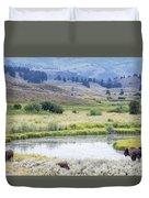 Bison At Slough Creek Duvet Cover