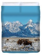 Bison At The Tetons Duvet Cover