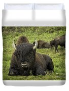 Bison Bliss Duvet Cover