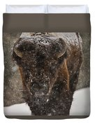 Bison Buffalo Wyoming Yellowstone Duvet Cover