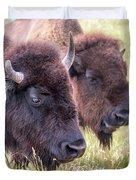 Bison Closeup View Duvet Cover