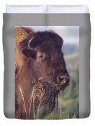 Bison Contemplating Duvet Cover
