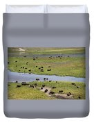 Bison Herd And Yellowstone River Duvet Cover