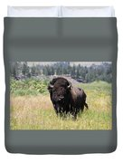 Bison In Grass Duvet Cover