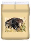 Bison In Hiding Duvet Cover