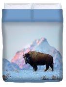 Bison Mountain Sunset Duvet Cover