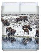 Bison Snow Reflecton Duvet Cover