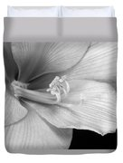 Black And White Amaryllis Bloom Duvet Cover