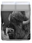 Black And White Bison In Heat Duvet Cover
