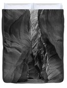 Black And White Buckskin Gulch Duvet Cover