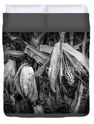 Black And White Ear Of Corn On The Stalk Duvet Cover