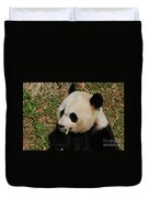Black And White Panda Bear Eating Green Bamboo Shoots Duvet Cover