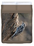 Black And White Warbler Duvet Cover