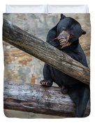 Black Bear Cub Sitting On Tree Trunk Duvet Cover