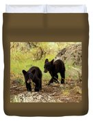 Black Bear Cubs Duvet Cover