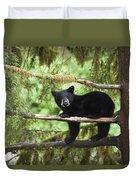 Black Bear Ursus Americanus Cub In Tree Duvet Cover